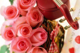 صورة زهور الحب, أنواع الورود و معانيها