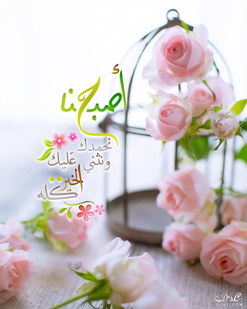 صورة صور صباح ومساء الخير, أجمل كلام الصباح والمساء 4562 1