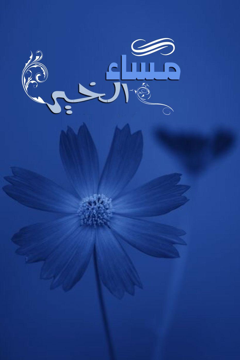 صورة صور صباح ومساء الخير, أجمل كلام الصباح والمساء 4562 5