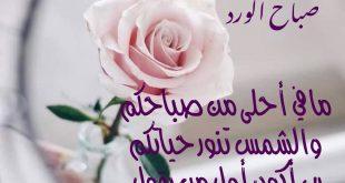 صورة شعر صباح الخير حبيبي, أجمل كلام رومانسي عن الحب في الصباح