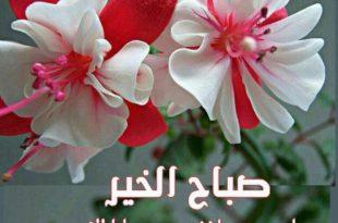 صورة احلى صباح لاجمل عيون , صباح العسل