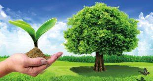 صورة لازم نحمى بيئتنا , صور عن البيئة