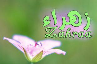 صورة معناه حلو اوى , اسم زهراء