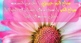 صورة مسجات اسلامية جديدة , رسائل دينية