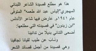 صورة هو فى حد مش بيحب الشعر , قصائد شعرية