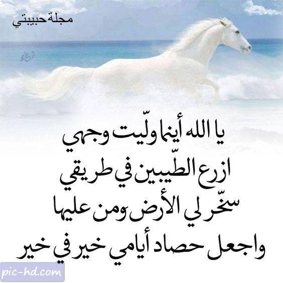 صورة بوستات حلوه للفيس بوك 275 3