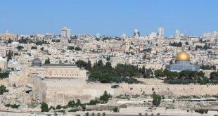 صورة اشعار عن فلسطين 11807 1 310x165